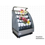 Горка холодильная EQTA для цветов СДв 1,0 Arona Fl (mini)