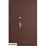 Металлическая дверь  ПРОФИ DL 1250